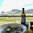 Fresh oysters and chilled white wine with a view